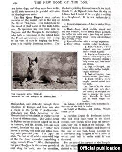 Trang nói về chó Phú Quốc trong sách 'The New Book of the Dog'.