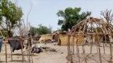 wadansu kauyuka da kungiyar Boko Haram ta kaiwa hari