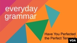 Have You Perfected the Perfect Tenses?