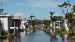 កសិករខ្មែរអាមេរិកាំងម្នាក់ក្នុងរដ្ឋ Florida រៀបរាប់ពីការខូចខាតដោយព្យុះសង្ឃរា Irma