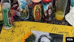 La iniciativa se generó tras el ataque de enero pasado que dejó seis muertos y 13 heridos entre ellos la congresista Gabrielle Giffords.