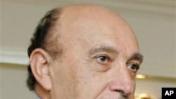 埃及副总统苏莱曼
