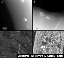 Electron microscope images show silver used in material. Top two show silver nanoparticles on material. Bottom left shows silver threads on material, and bottom right shows fiber coated with silver nanoparticles. (Credit Paul Westerhoff, ASU)