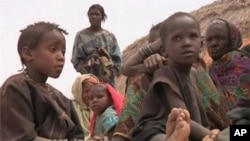 流亡到尼日尔的马里难民居住在临时住所里,粮食和水严重短缺