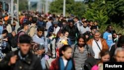 移民从克罗地亚的一个火车站走向匈牙利边界。 (2015年9月23日)