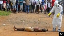 L'épidémie de virus à Ebola prenant de l'ampleur, l'Union africaine organise une réunion d'urgence à Addis Abeba en Ethiopie