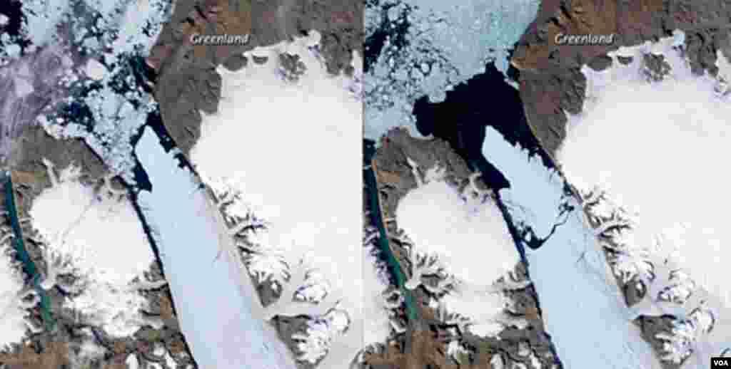Satelitski snimci Petermann člečera na sjevernom Greenlandu. Veliki ledeni otok površinu od oko 260 km kvadratnih (na snimku desno) otkinuo se od glečera 5. avgusta 2010