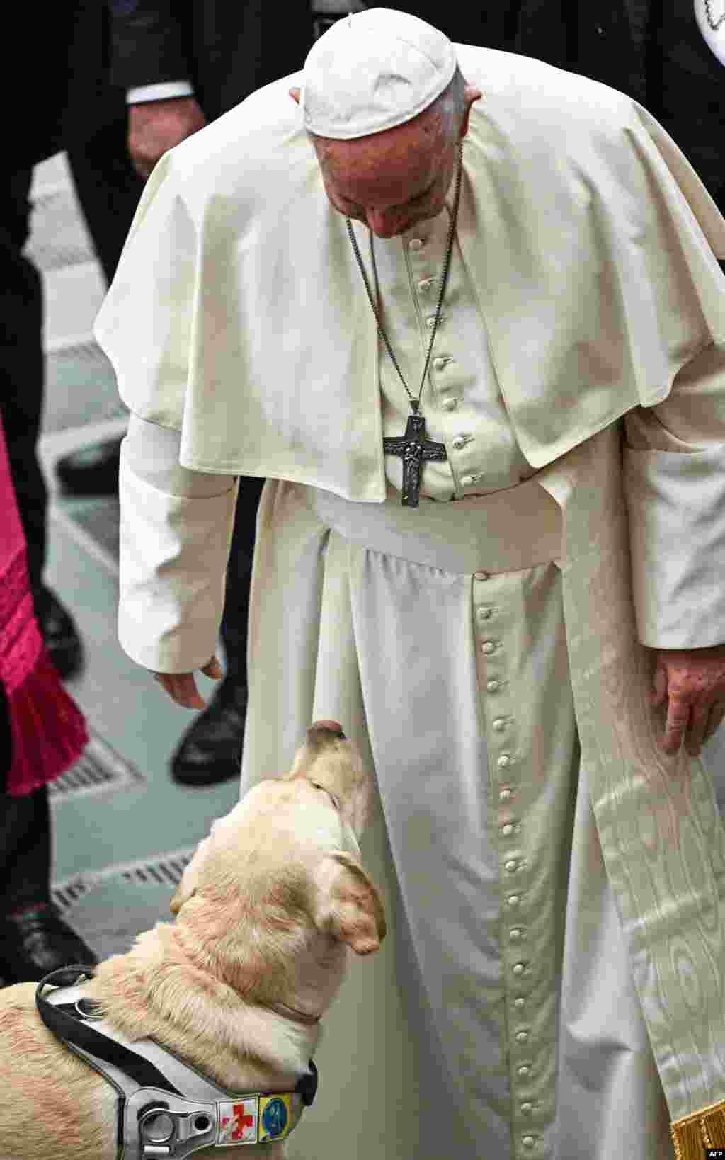 Vatikan - Roma Papası Frensis həftəlik çıxışı zamanı