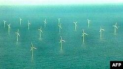 Amerika'nın Deniz Üzerindeki İlk Rüzgar Türbini Çiftliğine Tepkiler Büyüyor