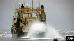 Ճապոնիան կարող է դադարեցնել կետերի որսն Անտարկտիկայում