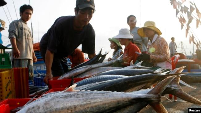 Cá bày bán ở Nha Trang. Mỹ là thị trường nhập khẩu hải sản lớn nhất của Việt Nam, chiếm hơn 20% tổng sản lượng của ngành công nghiệp xuất khẩu hải sản trị giá 7 tỷ đô la hàng năm.
