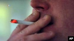 Un nuevo estudio indica que miles más muertes deben ser incluidos en el recuento anual de fallecimientos relacionados al tabaquismo.