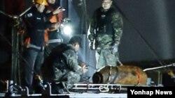 11일 오전 서울 한강철교 남단에서 한강경찰대와 공군 폭발물 처리반이 한국 전쟁 때 사용된 불발탄을 수중에서 인양해 폭발 가능 여부를 조사하고 있다. 이 폭탄은 한국전쟁 당시 미 공군이 사용하던 항공기 투하용 'AN-M64' 폭탄으로 확인됐다.