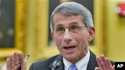 Dr. Anthony Fauci, director of the National Institute of Allergy and Infectious Diseases testifies on Capitol Hill in Washington, November 2009. (file photo)