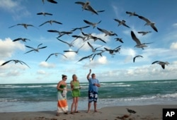 FILE - Preslee Rakes, left, her mother Tina Rakes, center, and Brad Cunningham, right, all from Kansas, feed seagulls during a visit to the South Beach area of Miami Beach, Florida, Dec. 11, 2011.