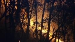 Australian Firefighters Merge Blazes to Contain Threat