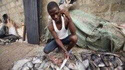 Contaminação de rio com enxofre deixa milhares sem fonte de rendimento em Chiúta, Moçambique