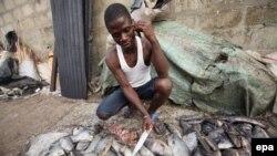 O mercado de peixe em Moçâmedes - 3:23