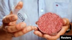پروفسور «مارک پست» اولین گوشت ساخته شده در آزمایشگاه توسط شرکت هلندی «موسا میت» را در رویدادی در لندن نشان می دهد. ۵ اوت ۲۰۱۳