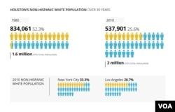 Houston's non-Hispanic white population.