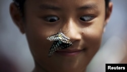 FILE - A boy reacts as a butterfly lands on his nose at a park in Kunming, Yunnan province, China, Sept. 26, 2015.
