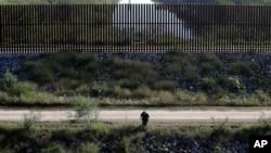 Un agente fronterizo de EE.UU. busca migrantes indocumentados tratando de cruzar la frontera por la zona de Hidalgo, Texas. Nov. 16, 2016.