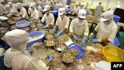 Công nhân làm việc trong công ty chế biến thủy sản