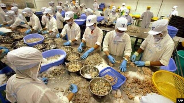 Hiệp định thương mại tự do giữa Việt Nam và EU có thể đẩy Việt Nam vào các ngành lợi nhuận thấp, lương thấp, có phần chắc sẽ làm hại các quyền của công nhân.
