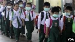 WHO dituduh terlalu membesar-besarkan bahaya pandemik flu babi.