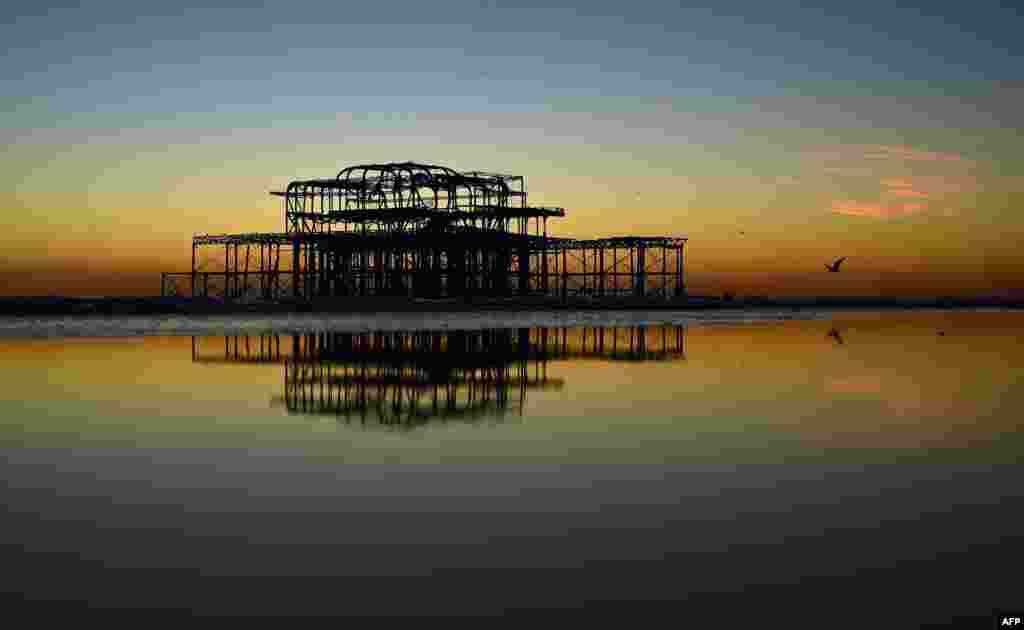 សត្វចាបហោះខ្វែលគ្រោងដែកនៅសេសសល់នៃកំពង់ផែ West Pier ជិតឆ្នេរក្រុង Brighton ខណៈពេលព្រះអាទិត្យកំពុងលិច នៅភាគខាងត្បូងប្រទេសអង់គ្លេស។