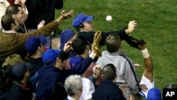 The Cubs announced Monday, July 31, 2017, they were giving a 2016 World Series championship ring to Bartman, the fan remembered for deflecting a foul ball that appeared destined to land in left fielder Moises Alou's glove with Chicago five outs from the W
