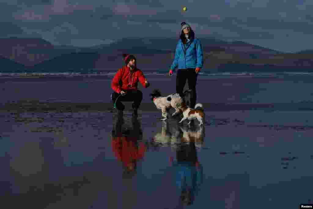 """Cathal King, 31, a veterinarian, and Jessica O'Connor, 28, a final-year veterinary student in Budapest, pose for a photograph with dogs on Rossbeigh Beach near the County Kerry village of Rossbeigh, Ireland, Feb. 4, 2018. """"We met playing tag rugby in Killarney. We're both very active people. We do adventure races, hiking, and love to travel. We've been together three-and-a-half years. I grew up back here in Rossbeigh, so that's the main reason we're here,"""" said Cathal. The dogs are Indi, the Spaniel, which they own together and Pippa, the Jack Russell, Jessica's mother's dog."""