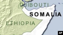 Somali Rebels Carry Out Amputations on Robbery Suspects