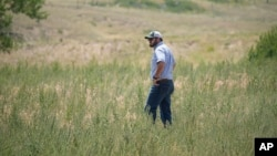 Cole Gustafson, a water resource administrator for the city of Greeley walks in a meadow to find a well head on the Terry Bison Ranch near Carr, Colorado. (AP Photo/David Zalubowski)