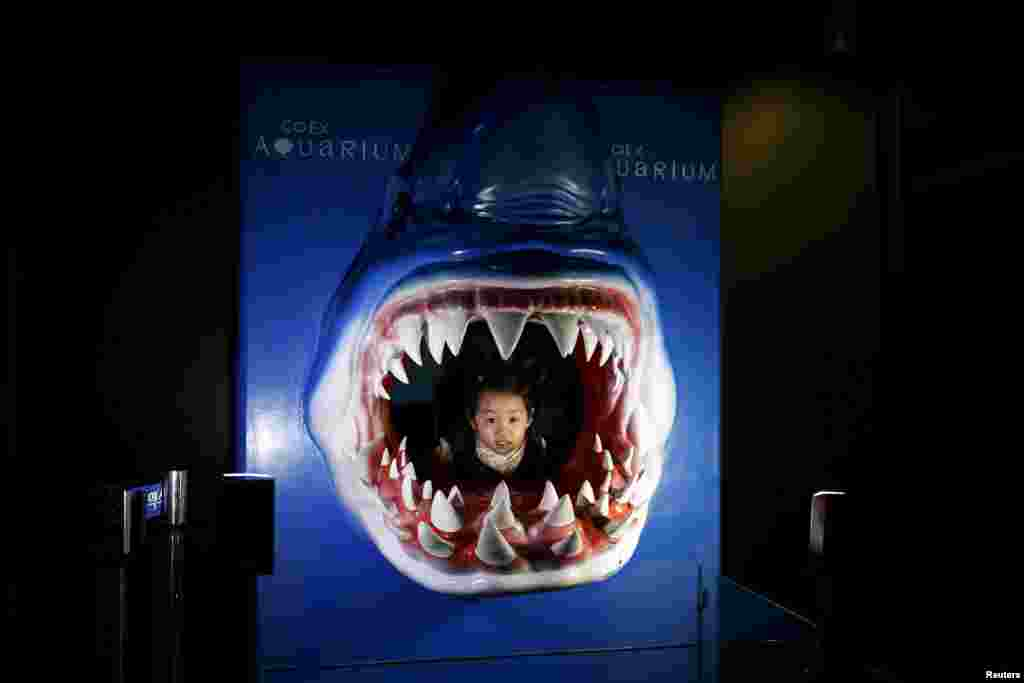 A girl poses for photographs inside a shark-shaped sculpture at an aquarium in Seoul, South Korea.