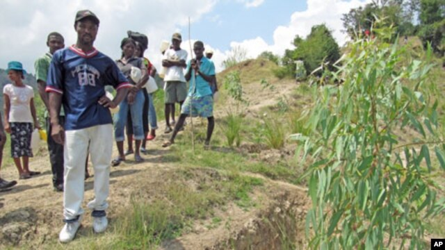 Restoring Haiti's hillsides with contour canals, vetiver grass, and trees