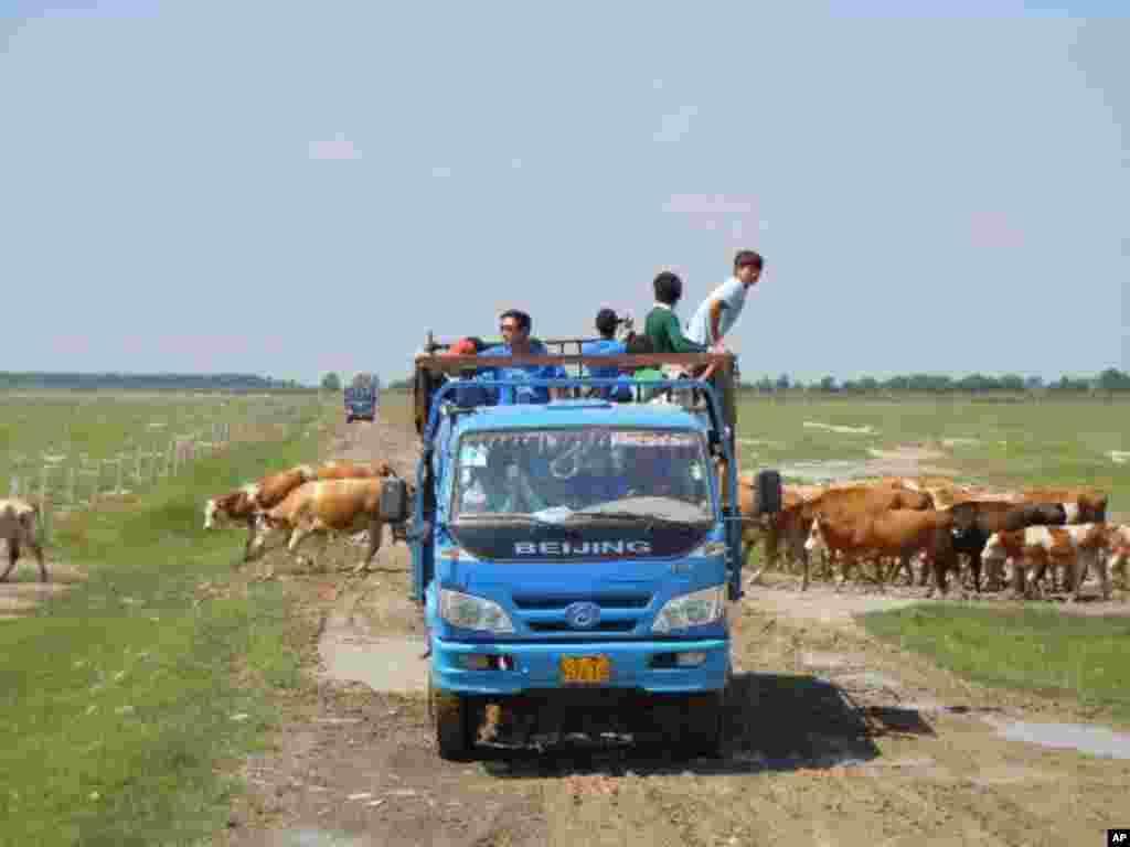 義工車隊經過科爾沁草原地區