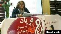 مریم محمدی، فعال حقوق زنان