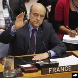French Foreign Minister Alain Juppe votes in favor of a Libyan resolution during a Security Council Meeting at U.N. headquarters in New York, March 17, 2011
