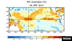 Các điểm nước ấm lên (đỏ) bắt đầu xuất hiện trên mặt Thái bình dương gần Nam Mỹ. Nước ấm lên dưới mặt nước là một yếu tố cho thấy hiện tượng El Nino có thể sẽ xuất hiện