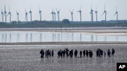 FILE - People explore the wadden sea at the island Norderney, Germany, in front of wind turbines, producing renewable energy, June 1, 2021.