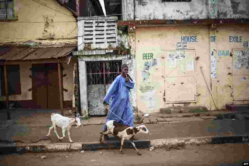 បុរសម្នាក់ដែលដឹកពពែពីរក្បាលឲ្យមេដាយទៅកាន់ក្រុមអ្នកគាំទ្រលោក Adama Barrow ដែលជាអ្នកដឹកទង់ជាតិឲ្យក្រុមសម្ព័ន្ធគណបក្សប្រឆាំងចំនួនប្រាំពីរនៅប្រទេសហ្គំប៊ី ខណៈពេលក្រុមអ្នកគាំទ្រទាំងនោះធ្វើក្បួនដង្ហែតាមដងផ្លូវរដ្ឋធានីបង់ហ្ស៊ុល។