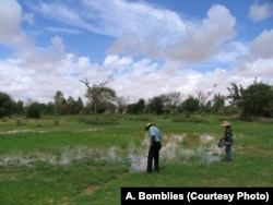 Researcher and field assistant taking measurements on a puddle in Zindarou, southwestern Niger.