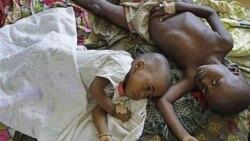 راهبردهای جهانی برای ریشه کنی بیماری مالاریا