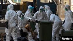 Petugas kesehatan membuang ayam mati ke tempat sampah di sebuah pasar di Hong Kong, Desember 2014.