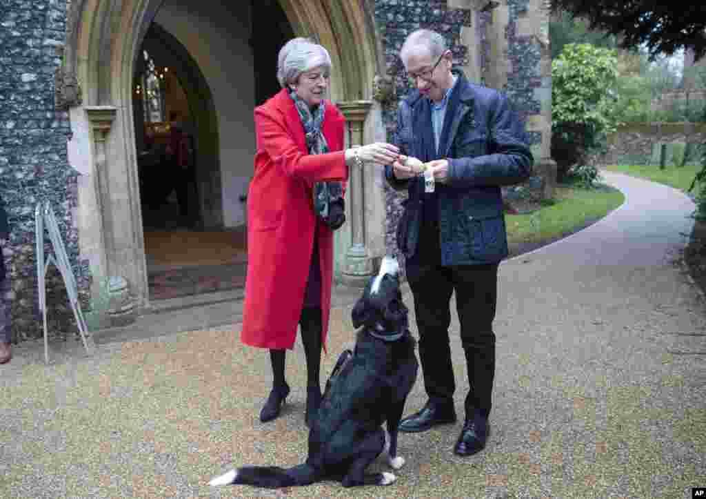 2018年12月27日,英国首相特蕾莎·梅参加传统的圣诞节晨祷,给边境牧羊犬(Border Collie)一根骨头啃。