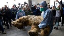 Quiz - Russia's Permafrost Provides Buried Treasure