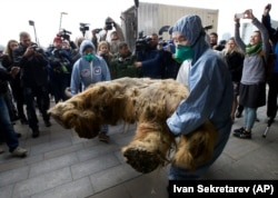 FILE: Russia Baby Mammoth named Yuka on Oct. 28,2014. Scientists say the 39,000-year-old baby mammoth is the best preserved one.