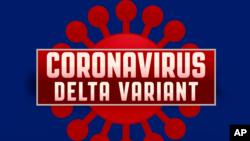 新冠病毒德尔塔变异毒株示意画。(美联社)