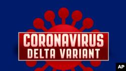 新冠病毒的變異病毒株德爾塔(Delta variant)已經出現在14個中國省份。
